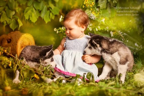 Ребята и волчата