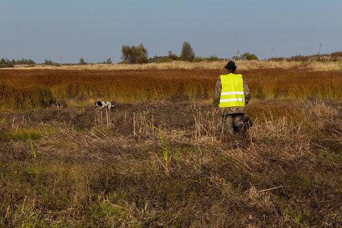 Испытания по болотной дичи 26.09.2014 года 0_b2ada_8248f05b_L