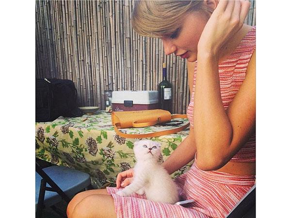 Тейлор Свифт  с кошкой