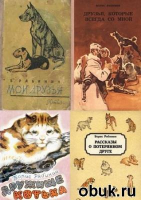 Журнал Рябинин Б.С. - 14 книг