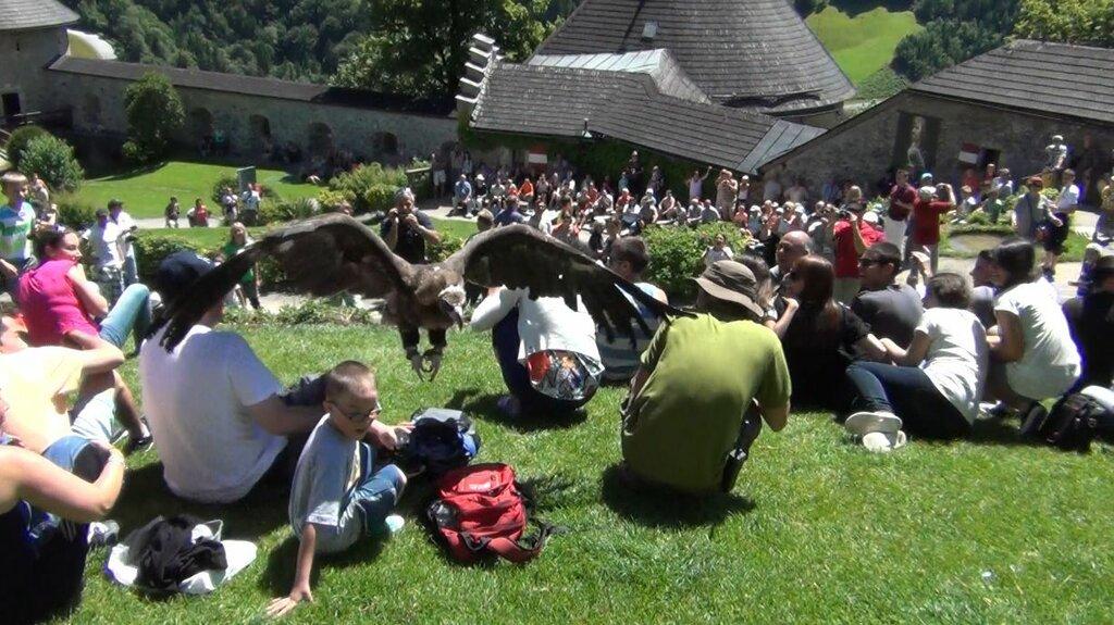 Альпийский автопробег с Сусаниным (часть 8-я)  Крепость Хоэнверфен, соколиная охота
