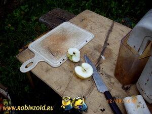 яблокозезка