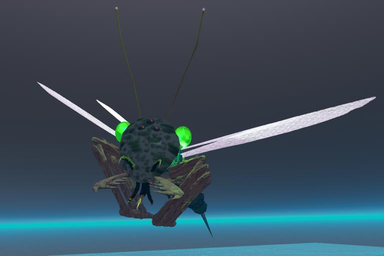 insect-019.jpg