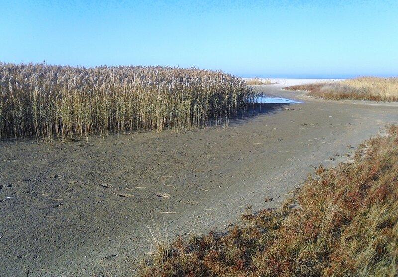 В походе, Азовское побережье, ноябрь, 2014 год