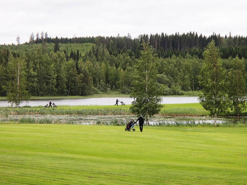 поля для гольфа в Лаукаа (Laukaa)