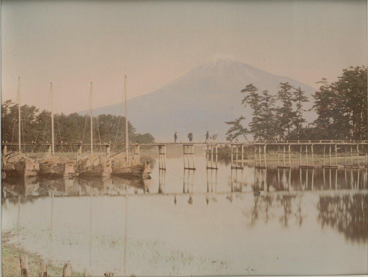 Гора Фудзи из Тагонаура