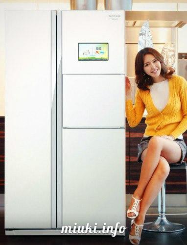 Интернет в японских холодильниках