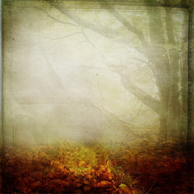 sarayane_autumnfeeling (9).jpg