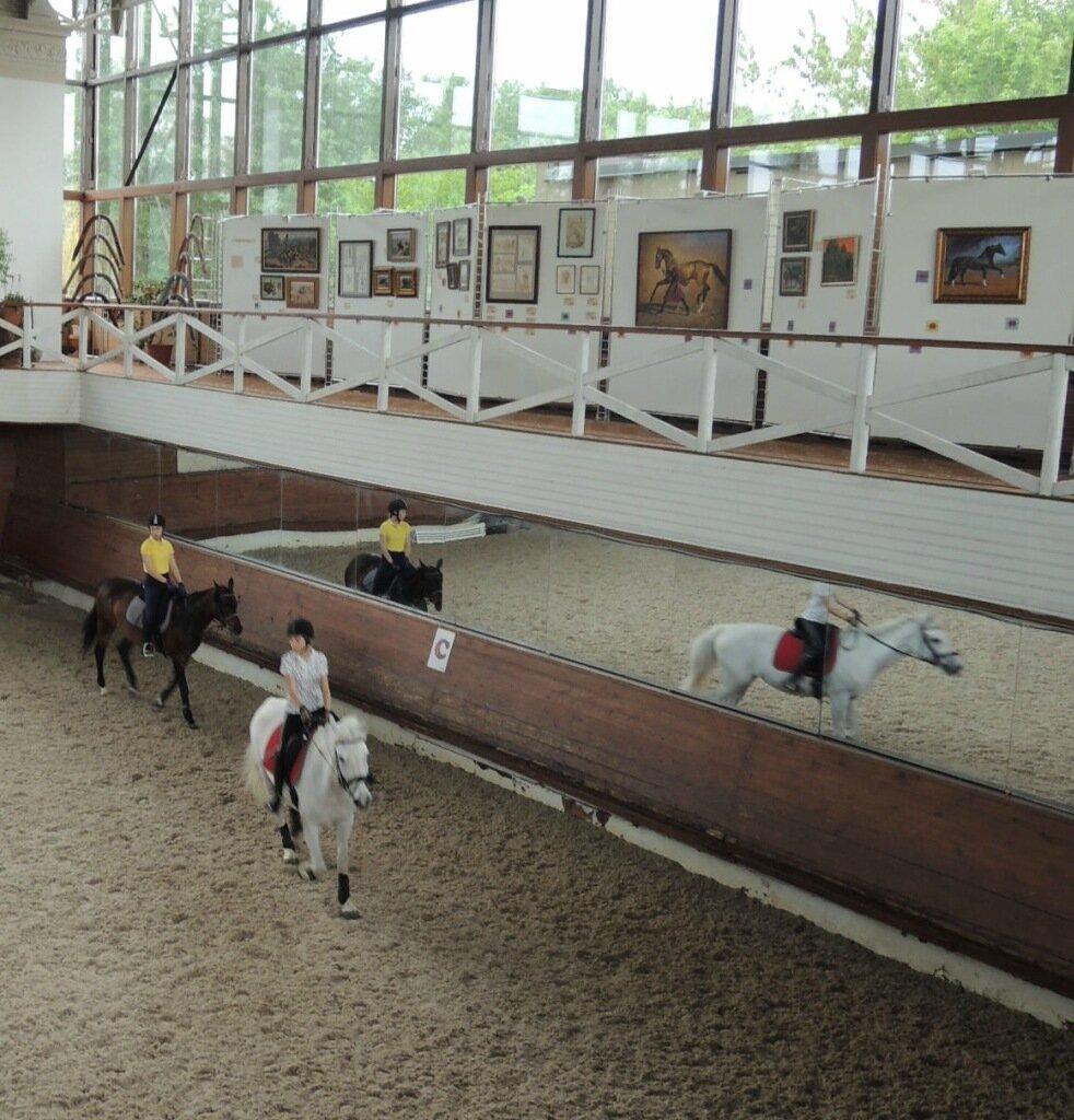 """Выставка в """"Прадаре"""" май-июнь 2015"""