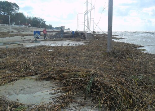 После бури, 24 сентября 2014, Азовское побережье, западный ветер