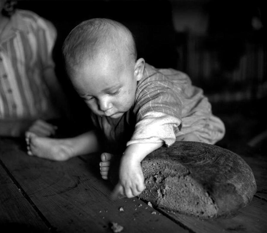 Австрия, 1948 год - Маленький ребенок, тянущий свои руки к ржаному хлебу, в лагере для беженцев из числа судетских немцев