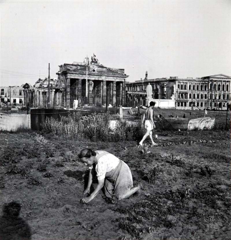 Германия, Берлин, 1947 год - Женщина, занимающаяся посадкой огорода прямо возле Бранденбургских ворот