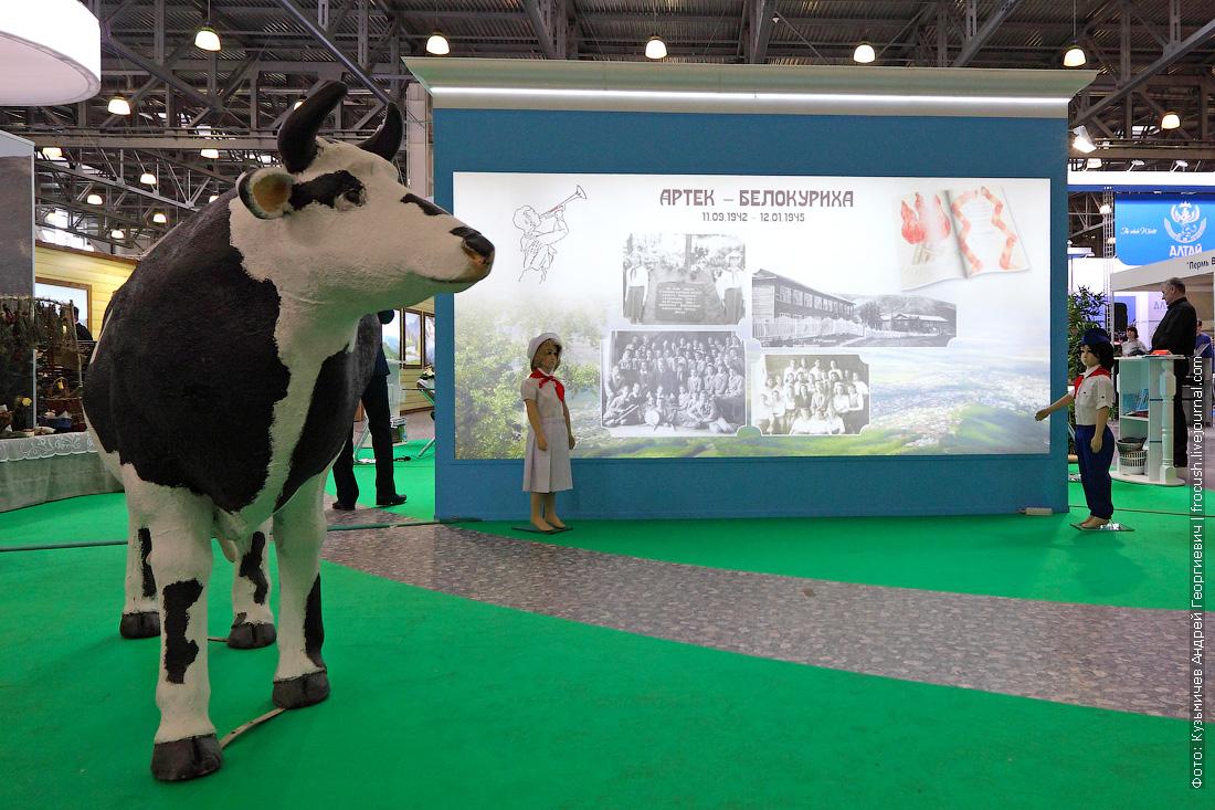 белокуриха выставка интурмаркет ITM 2015 фотографии участников