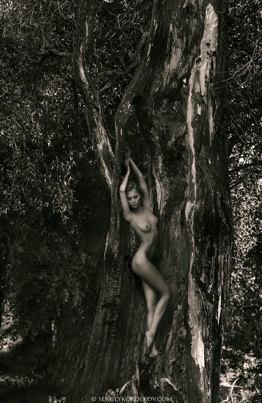 Фото корольков секс 7 фотография