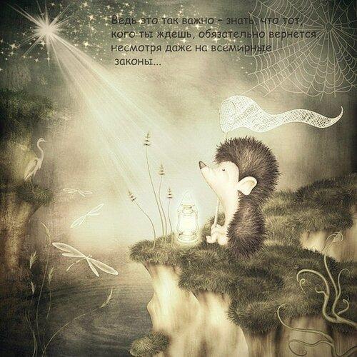 Картинки с ежиком спокойной ночи мужчине, открытка маленькая шаблоны