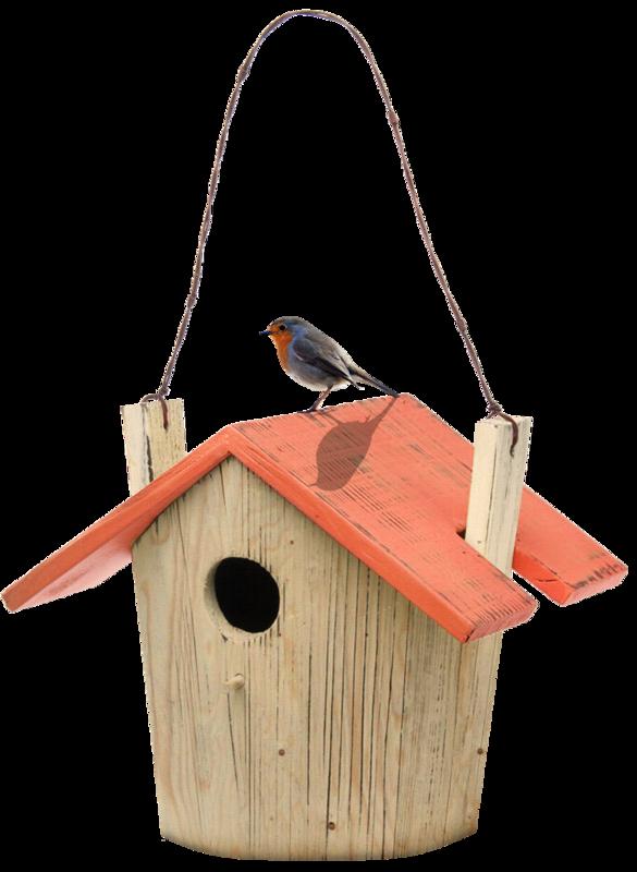 nb_np_birdhouse.png