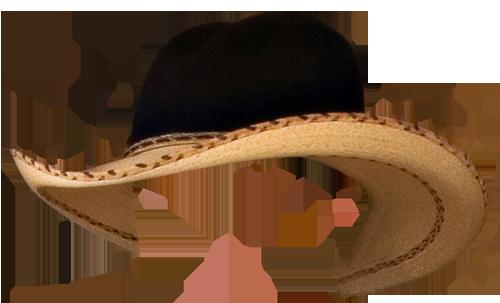 Дамские шляпки – Клипарт PNG
