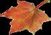 autumn (1397).png