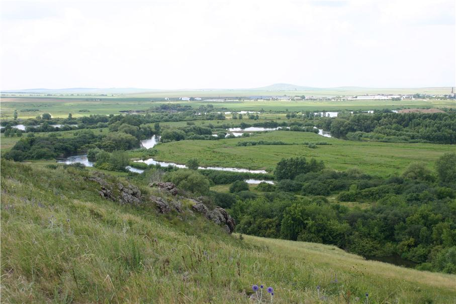 Река в этом месте изобилует поворотами и старицами (16.07.2014)