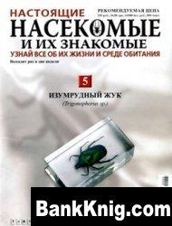 Журнал Настоящие насекомые и их знакомые. Выпуск 5. Изумрудный жук