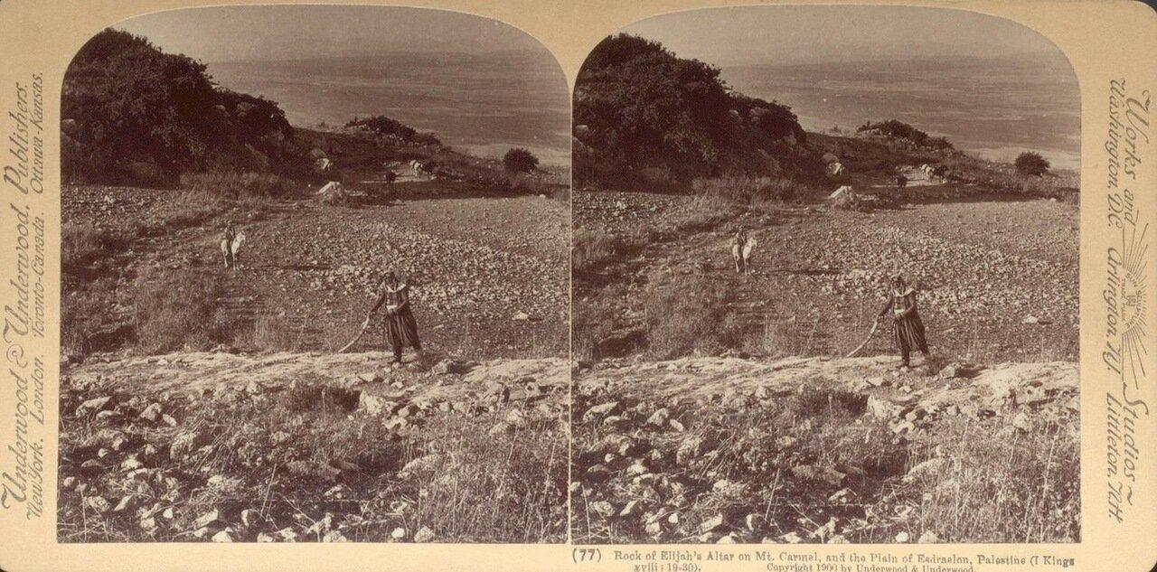 Гора Кармель. Скала Алтаря Илиягу. 1900