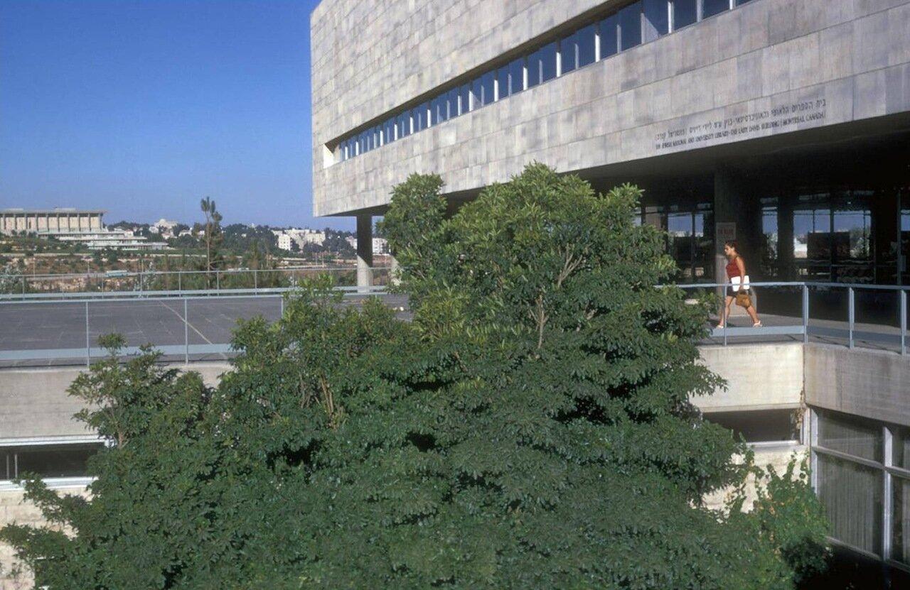 Еврейский университет. Библиотека