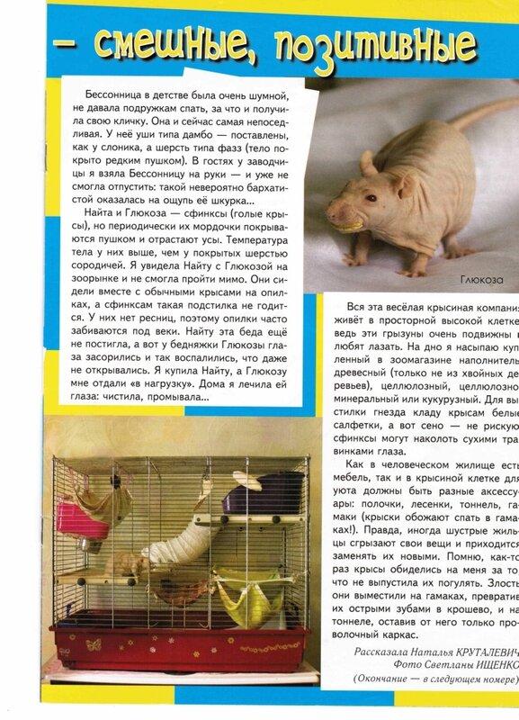 http://img-fotki.yandex.ru/get/6812/99635834.11/0_18cd6c_c34e54ff_XL.jpg