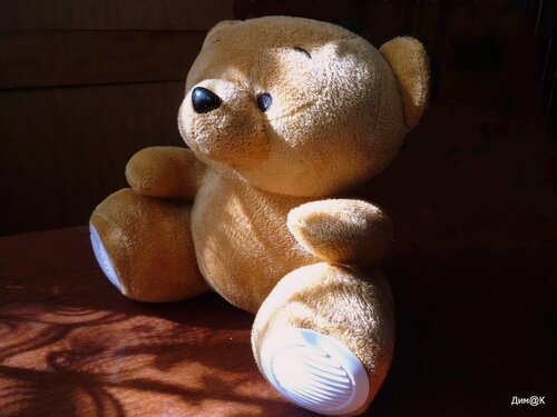 Texet TPA-3005 Winnie Bear (внешний вид)