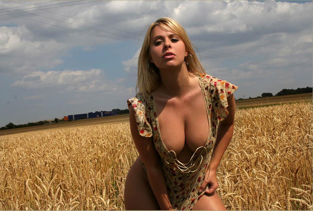 На пшеничном поле