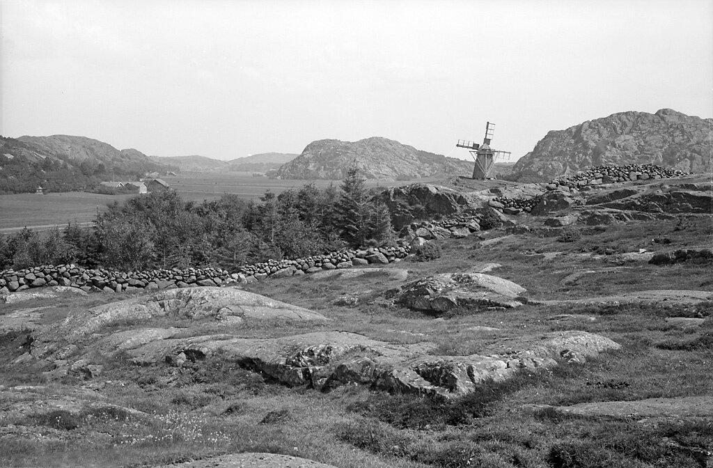 Västra Götaland, Tjörn, Stenkyrka, Bohuslän, Miljöer-Odlingslandskap-Betesmark