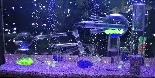 akvarium7.jpg