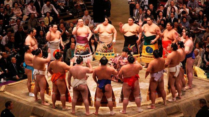 Императорская борьба: Самые интересные факты о японской борьбе сумо