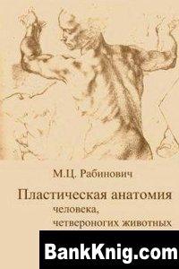 Книга Пластическая анатомия животных, четвероногих животных и птиц          djvu