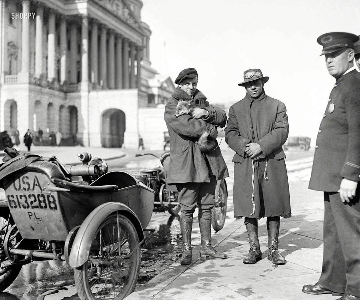 Мотоциклисты с пойманным лисенком (Вашингтон, 1919 год)