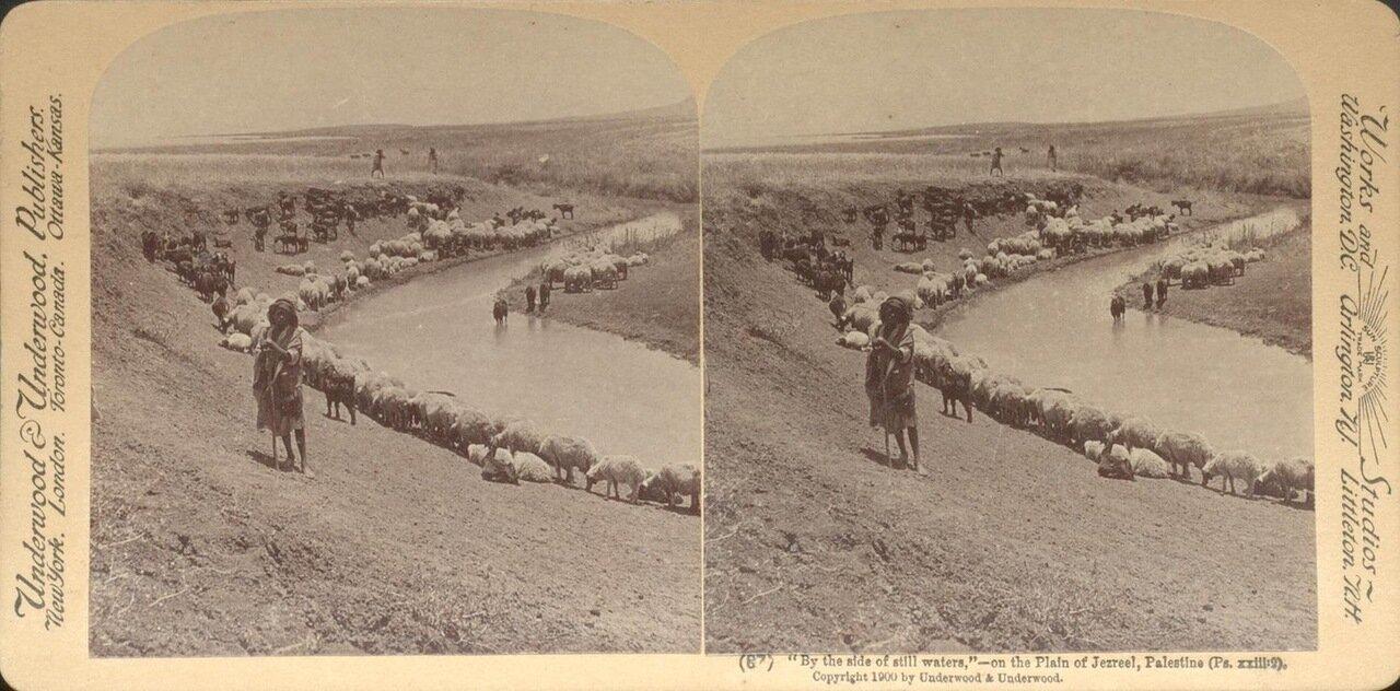 Изреельская долина. 1900