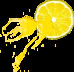 Lemony-freshness_elmt (15).png