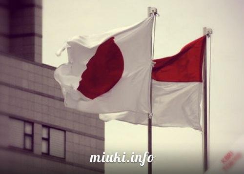Экономическое сотрудничество Японии и Индонезии