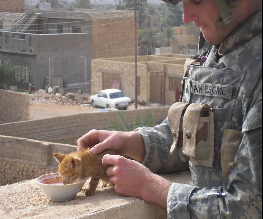 Фото солдат, часть 1 (95 штук)