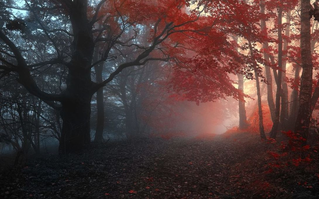 50 Осенних Пейзажей Со Всего Мира