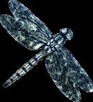 Dragonfly-GI_DarknessSparkles.png