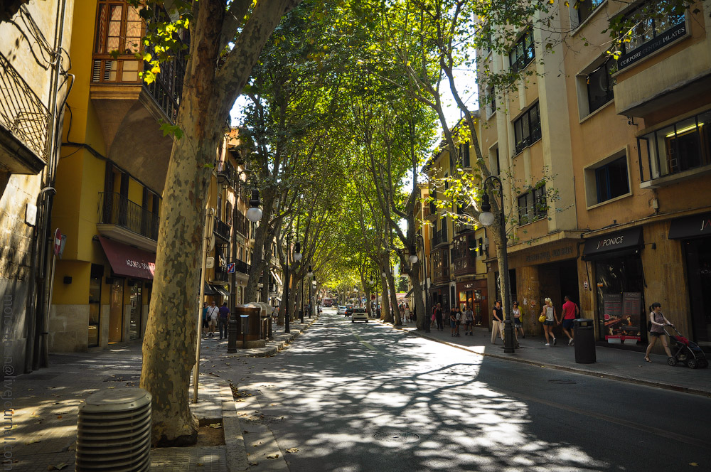 Mallorca-(6).jpg