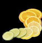 цитрусы (4).png
