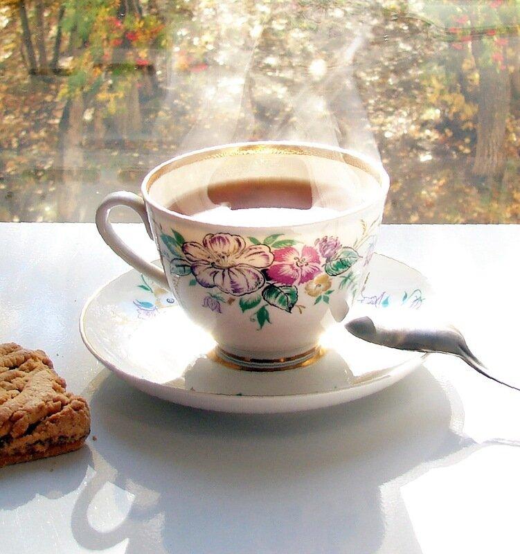 astra.kosmeya чай с солнцем