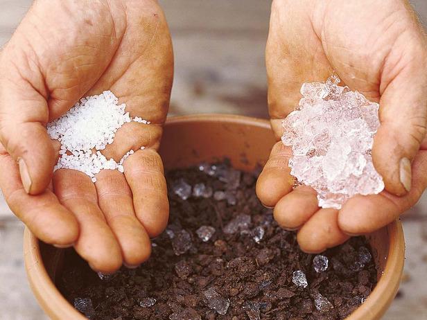 Жара - Как спасти растения от жары-гидрогель