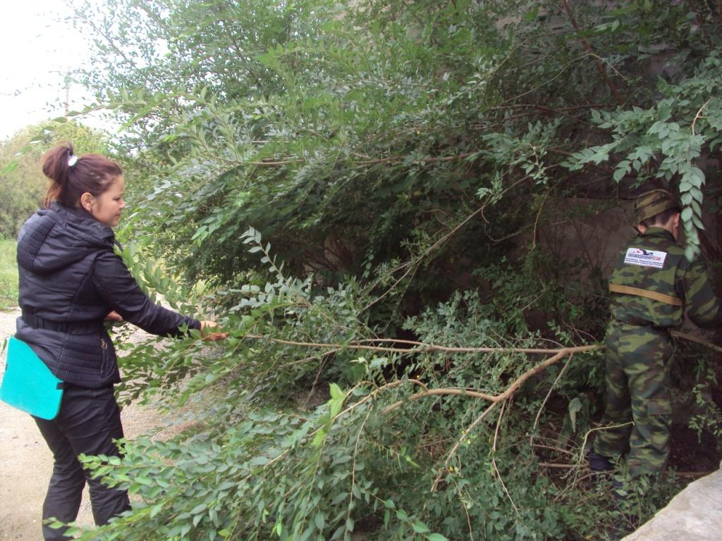 Ирина Сунагатуллина иМиша Стромов вчаще сорных растений