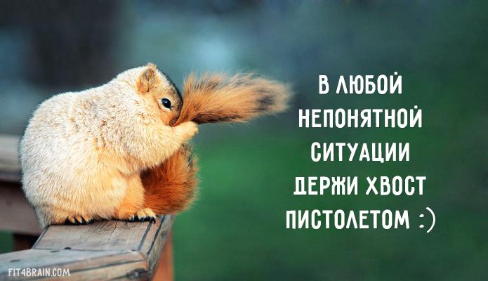 https://img-fotki.yandex.ru/get/6815/211975381.7/0_180ff6_d1b36ab6_orig.jpg
