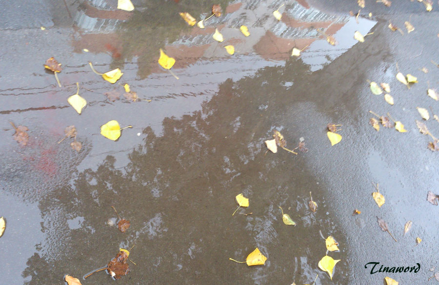Дождь-3.jpg