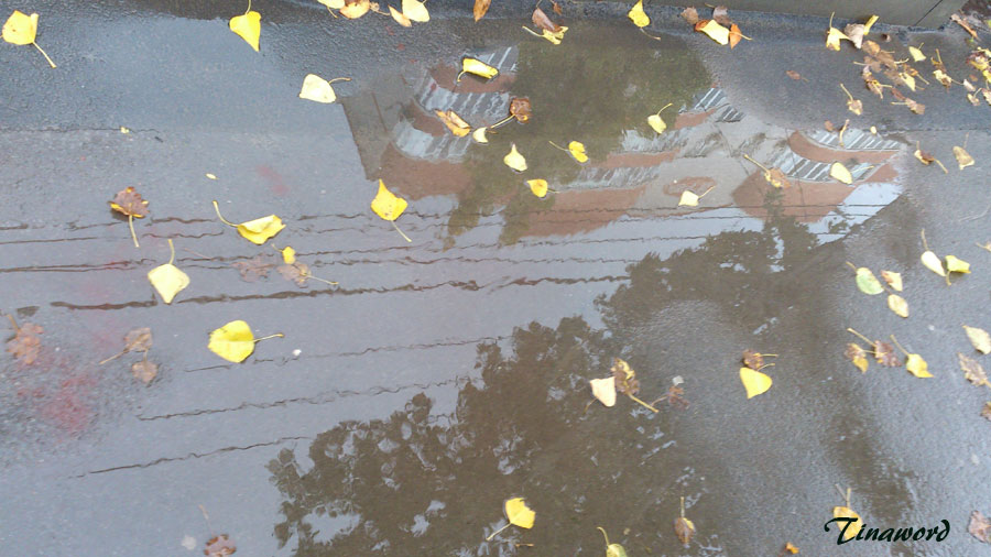 Дождь-4.jpg