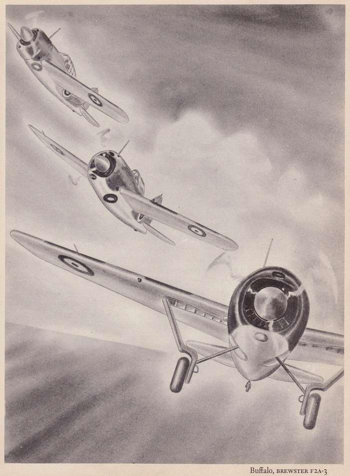 Brewster F2A Buffalo - палубные истребители