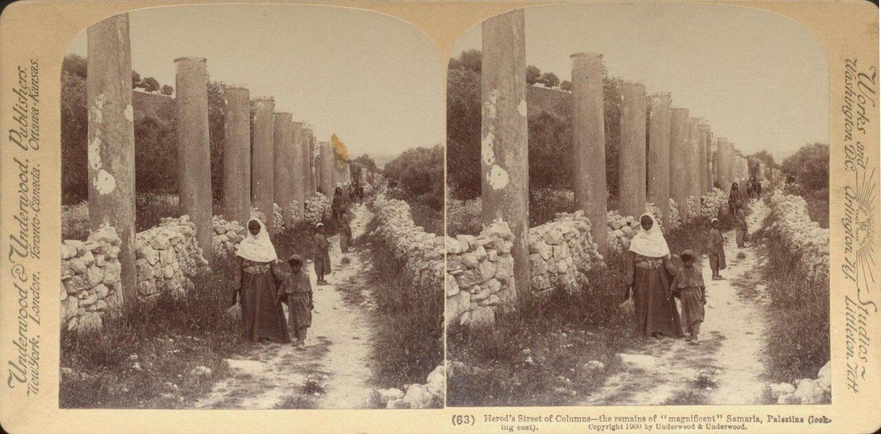 Колонны улицы Ирода в Самарии. 1900